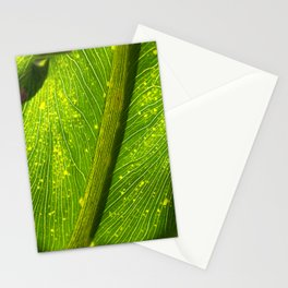 Spotted Leaf Stationery Cards