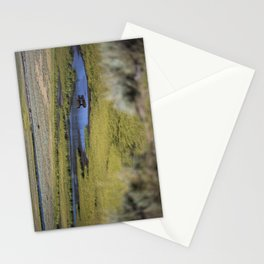 Bison baby Stationery Cards