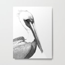 Black and White Pelican Metal Print