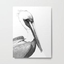 Black and White Pelican Metal Print
