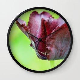 Gorgeous dark macro tulip over green background Wall Clock