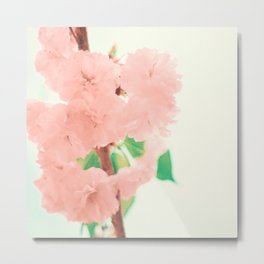 Pink and soft Metal Print