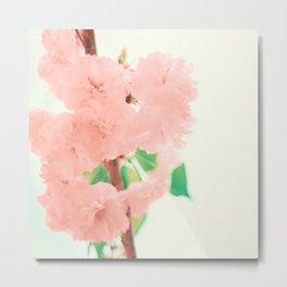 Pink and soft Metal Print