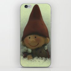 For coming New Year) iPhone & iPod Skin