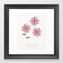 Purple Aster Modern Botanical Framed Art Print