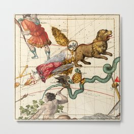Virgo, Hydra, Crater, Bootes, Leo, Centaurus And Other Constellations Metal Print
