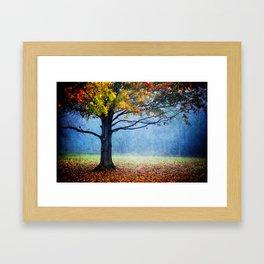 Nature's Generosity Framed Art Print