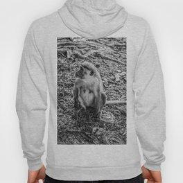 Toque Macaque Monkey Hoody