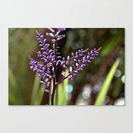 Botanical Dream of Spring Canvas Print