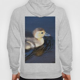 Cute Duckling Swimming in a Pond Hoody
