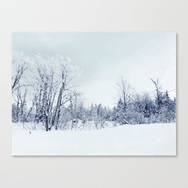 Freezing trees in a winterland decor Canvas Print