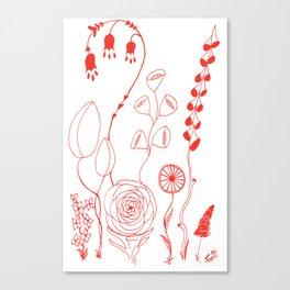 Flowers orange illustration Canvas Print