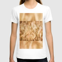Golden ripe cereal ears grow on field T-shirt