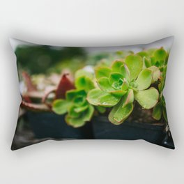 Succulent Rain Drop Rectangular Pillow