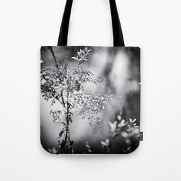 Grunge Film Noir Dried Plants Nature Image Tote Bag