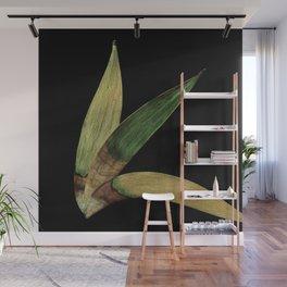 Three Eucalyptus Leaves: A Minimalist Perspective Wall Mural