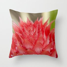 Prickly Heart Throw Pillow