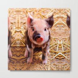 Cute Baby Piglet Farm Animals Babies Metal Print