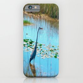 Blue Heron in the Glades iPhone Case