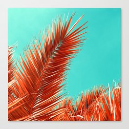 palm leaf I Canvas Print