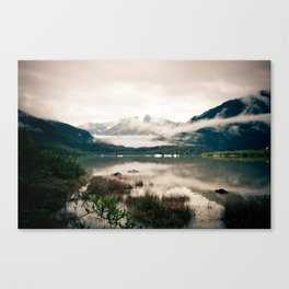 ice Canvas Print