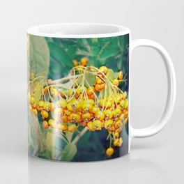 Quand l'hiver s'illumine Coffee Mug