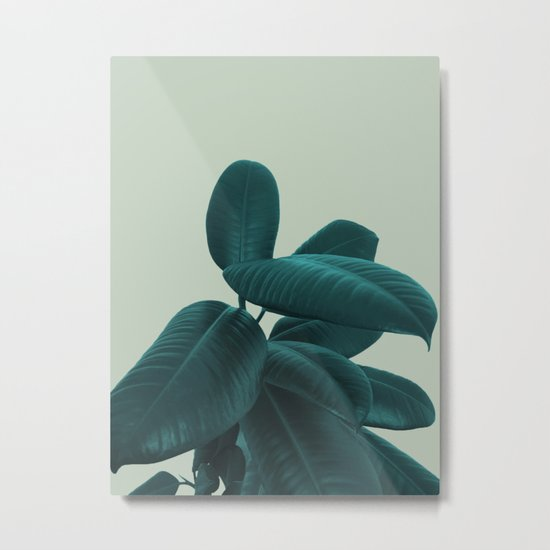 Ficus Elastica #8 #GreenLily #decor #art #society6 Metal Print
