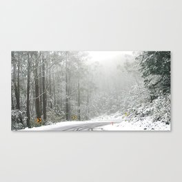 Down the Summit Canvas Print
