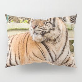 Post Playtime Rest, Indo-china Tiger Pillow Sham