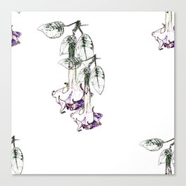 Illustrated Moonflower in Purple and Green Canvas Print