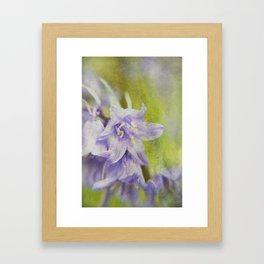 Textured Bluebells Framed Art Print