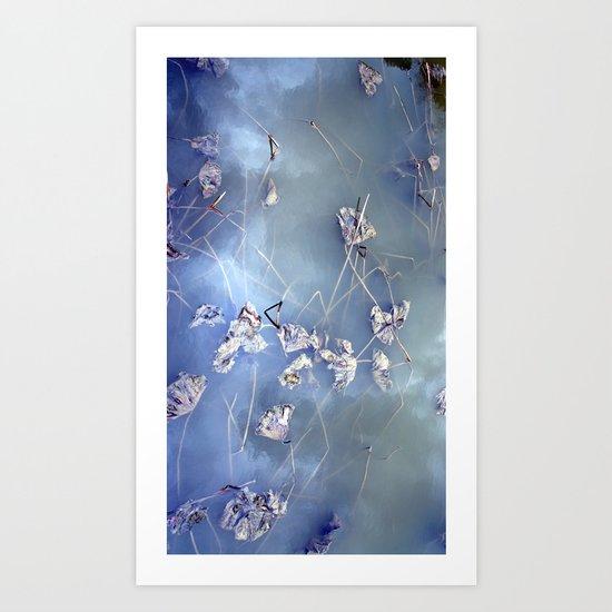 winter lotus Art Print