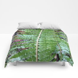 Giant Fern Comforters