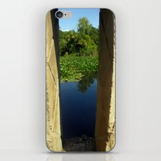 Framing a Pond iPhone & iPod Skin