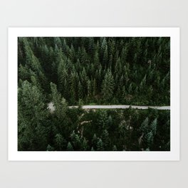 Trail through the woods Art Print