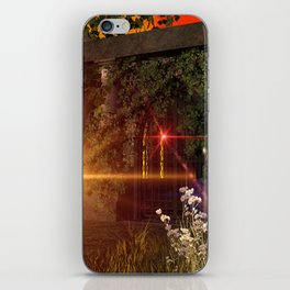 Old crypt iPhone Skin