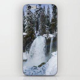 Winter Waterfall II - Pacific Northwest Nature Photography iPhone Skin