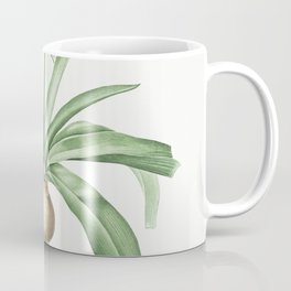 Portuguese squill  from Les liliacees (1805) by Pierre-Joseph Redoute Coffee Mug
