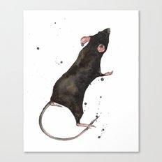 Rat, rodent painting, black rat, ratty, watercolor rat, rat pillow cover Canvas Print