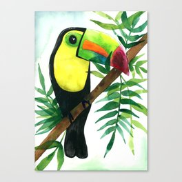 Tropical Toucan Canvas Print