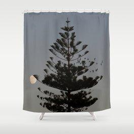 Araucaria tree, full moon, flight of birds Shower Curtain