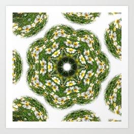 Little White Wildflower Kaleidoscope Art 2 Art Print