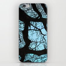 Tree study iPhone Skin