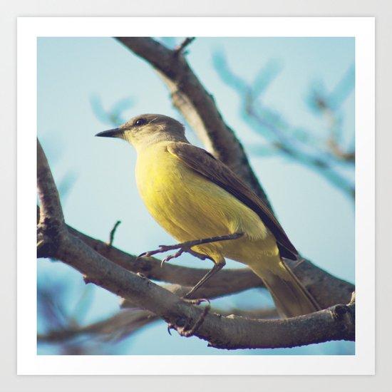 Yellow-Bellied Bird (Retro - Vintage Bird on blue sky) Art Print