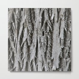 Rustic Tree Bark Metal Print