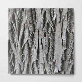Rustic Tree Bark Metal Print