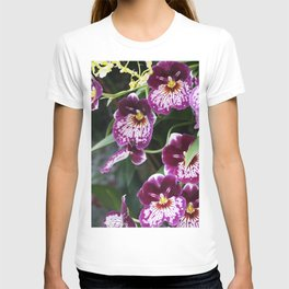 Longwood Gardens Orchid Extravaganza 60 T-shirt