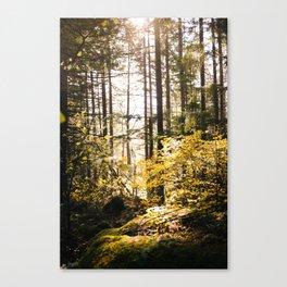 Hidden forest Vertical Canvas Print