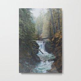 Little Qualicum Falls Metal Print