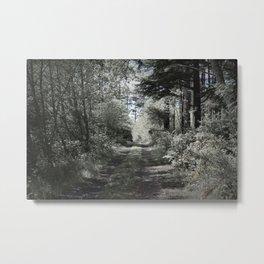 Backroad Metal Print